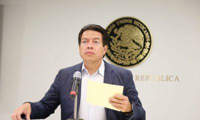 Delgado Senador Morena