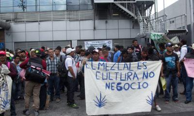 Protesta Mezcal