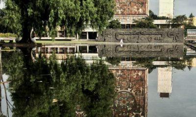 UNAM, Senadro, violación
