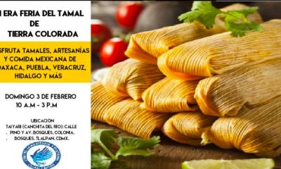 Tamales sur ciudad