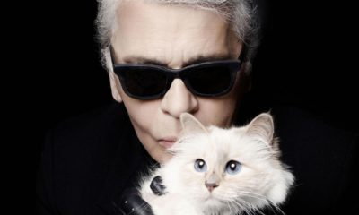 Choupette, Karl Lagerfeld, Lagerfeld, hereda, fortuna, heredera, gata, gato, mascota, modista, moda, Kaiser, influencer, instagram,