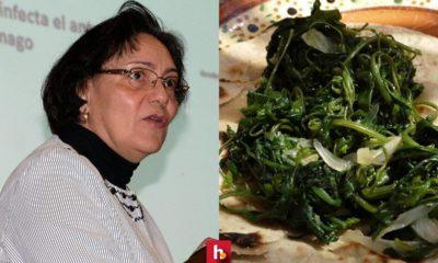 El alimento previene males gástricos Comer quelite puede prevenir la gastritis: UNAM
