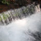 80% del agua en México es consumido por la industria y el sector agrícola