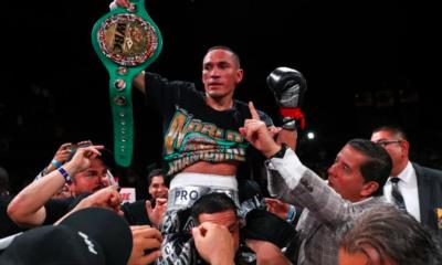 Gallo Estrada, Gallo, Box, Campeón, Supermosa, Superpluma, CMB, Consejo Mundial de Box,