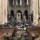 Catedral de Notre Dame reconstrucción