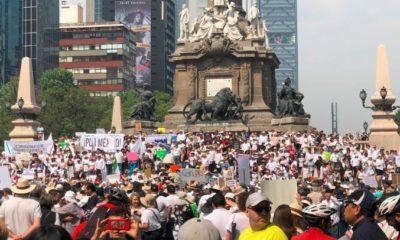 Amlo, Marcha, Antiamlo, México, Movilización, Reforma, Protesta,