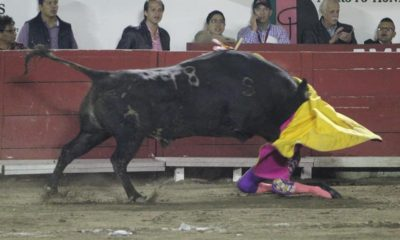 Hilda Tenorio recibe embestida Puebla Toros Tauramaquia cornada