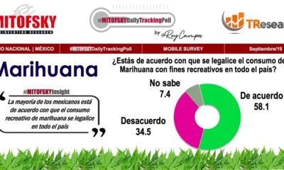 Mayoría de mexicanos aprueba legalizar marihuana: Mitofsky