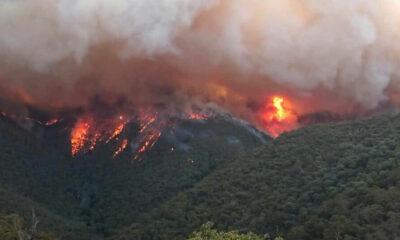 Suman 27 personas fallecidas por los incendios en Australia