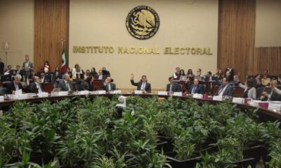 Los 6 (no tan) nuevos partidos que el INE podría aprobar
