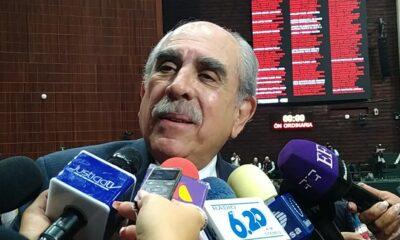 Pablo, Gómez, Autonomía, UNAM, Universitaria, Morena, Diputados,