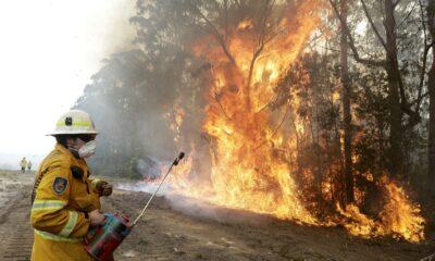 Autoridades controlan totalmente incendios en Australia