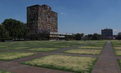 UNAM aún no tiene fecha para reanudar clases presenciales