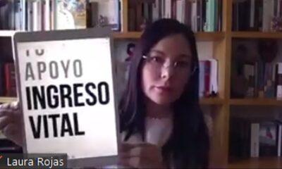 Ingreso único Vital Cámara de Diputados Laura Rojas