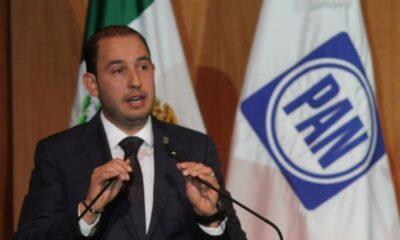 El gobierno atenta contra inversiones en energías renovables: PAN