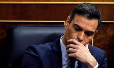 Pedro Sánchez ofrece disculpas por errores en gestión del Covid-19